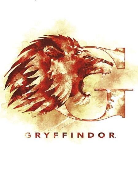 Gryffondor Harry Potter - My Little Wizard